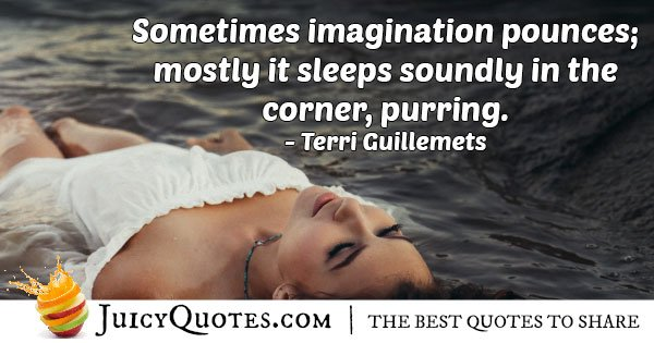 Imagination Pounces Quote