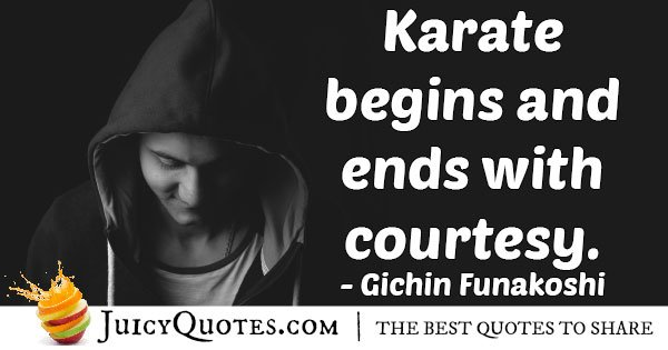 Karate and Curiosity Quote