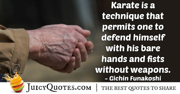 Karate Technique Quote