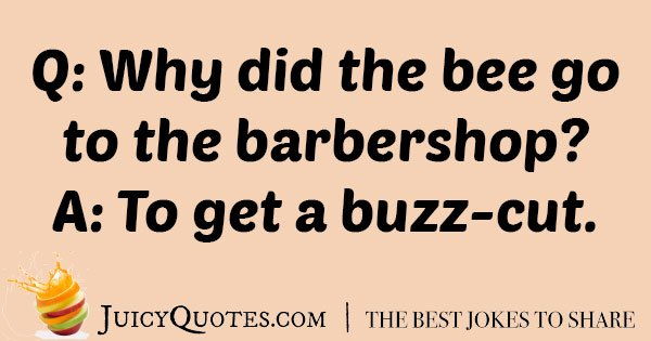 Bee Haircut Joke