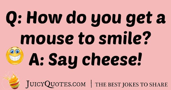 Mouse and Cheese Joke