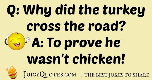 Jokes About Chickens: Turkey And Chicken Joke