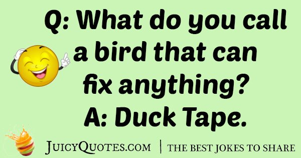 Funny Duck Pun