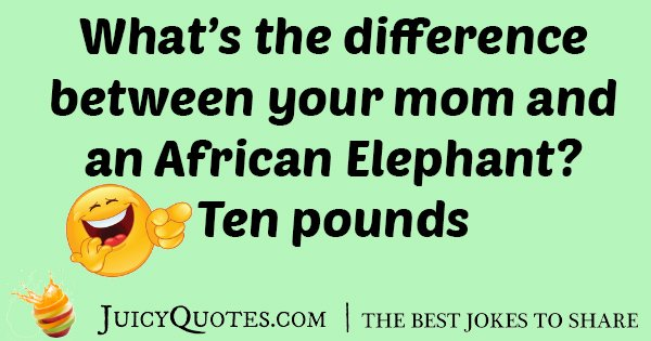Your Mom and Elephant Joke
