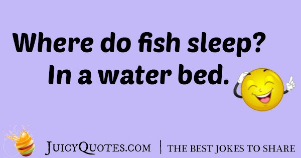 Sleeping Fish Joke