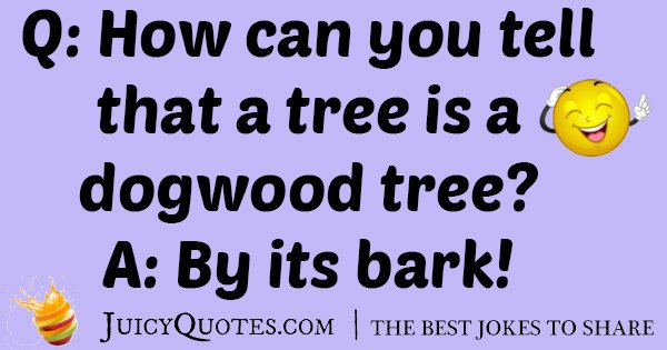 Dogwood Tree Joke