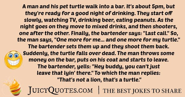 Drinking Turtle Joke