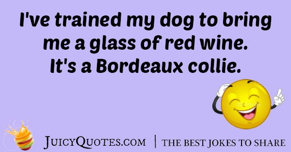 Trained Wine Dog Joke