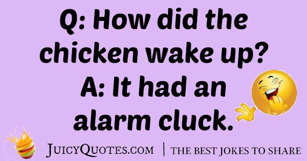 Chicken Wake Up Joke