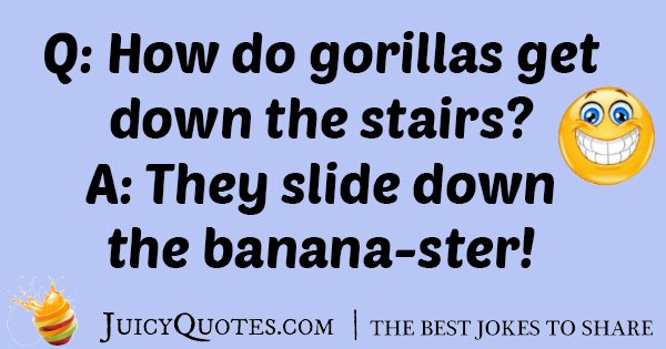 Gorillas Down The Stairs Joke