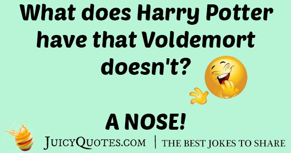 Harry Potter VS Voldemort Joke
