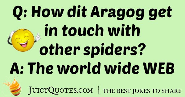 Aragog With Spiders Joke