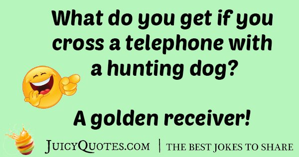 Hunting Dog Joke