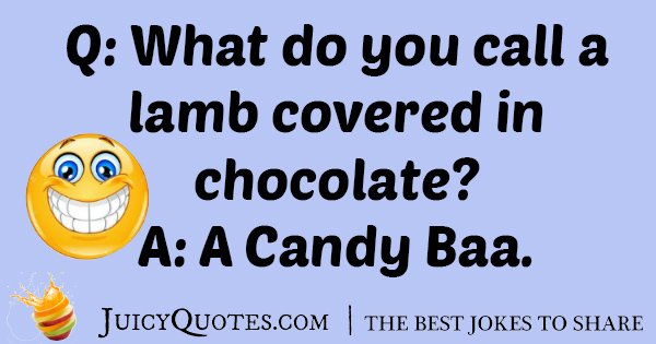 Chocolate Lamb Joke