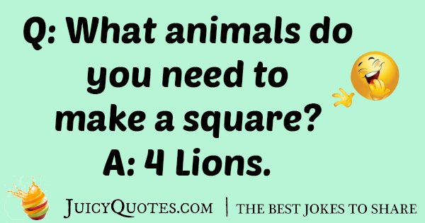Square With Lions Joke